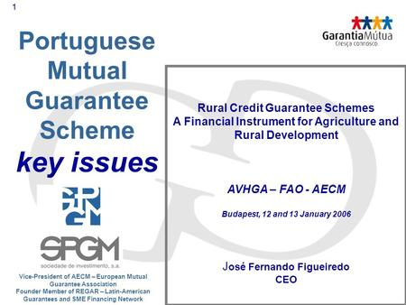 1 Portuguese Mutual Guarantee Scheme key issues Rural Credit Guarantee Schemes A Financial Instrument for Agriculture and Rural Development AVHGA – FAO.
