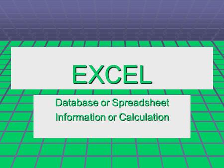 EXCEL Database or Spreadsheet Information or Calculation.