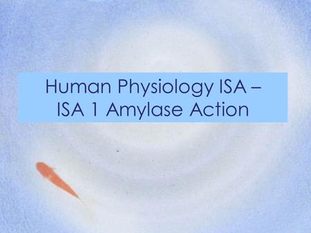Human Physiology ISA – ISA 1 Amylase Action