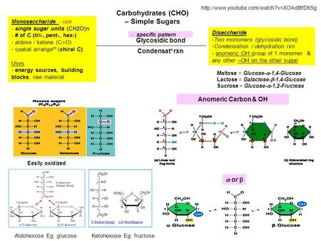 Carbohydrates (CHO) – Simple Sugars Disaccharide -Two monomers (glycosidic bond) -Condensation / dehydration rxn - anomeric OH group of 1 monomer & any.