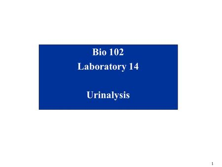 Mcfp Urinalysis Competency Quiz