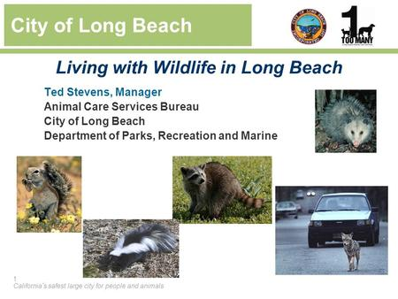 1 California's safest large city for people and animals Ted Stevens, Manager Animal Care Services Bureau City of Long Beach Department of Parks, Recreation.