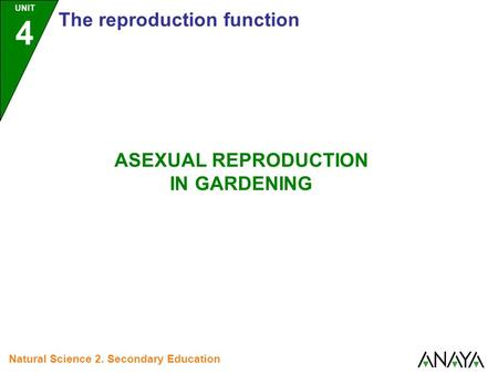 UNIT 4 The reproduction function Natural Science 2. Secondary Education ASEXUAL REPRODUCTION IN GARDENING.