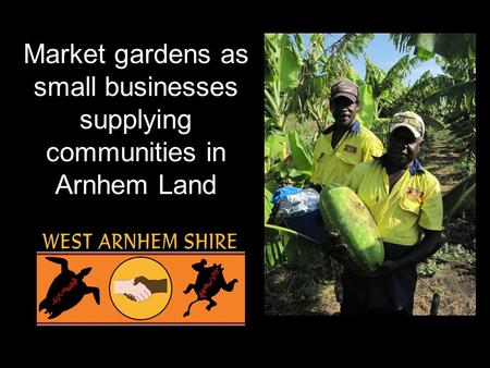Market gardens as small businesses supplying communities in Arnhem Land.