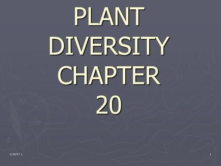 1/30/07 L 1 PLANT DIVERSITY CHAPTER 20. 1/30/07 L2 Warm-up ► Pick up the 3 sheets on your way in 1. What 3 things do all plants need to survive 2. What.