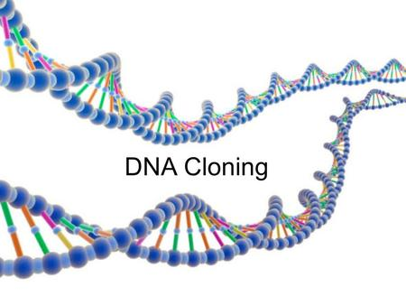 DNA Cloning. Cloning a line of genetically identical cells or individuals derived from a single ancestor produces many copies of a piece of DNA uses a.
