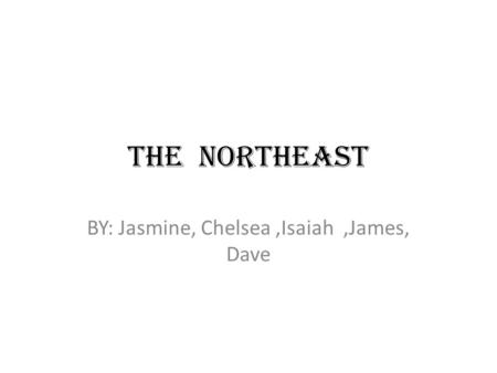 THE NORTHEAST BY: Jasmine, Chelsea,Isaiah,James, Dave.