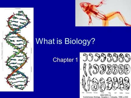 What is Biology? Chapter 1. –Where did plants and animals come from? – How did I come to be? –Humans have tried to answer these questions in different.