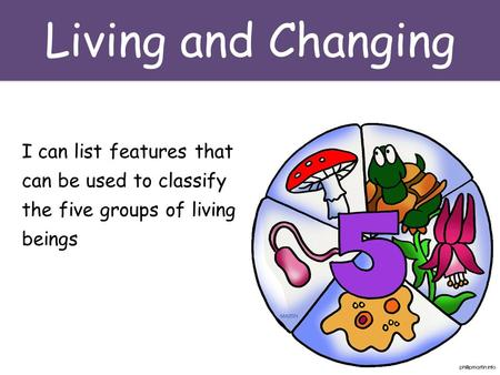 Living and Changing I can list features that can be used to classify the five groups of living beings.