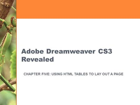 Adobe Dreamweaver CS3 Revealed CHAPTER FIVE: USING HTML TABLES TO LAY OUT A PAGE.