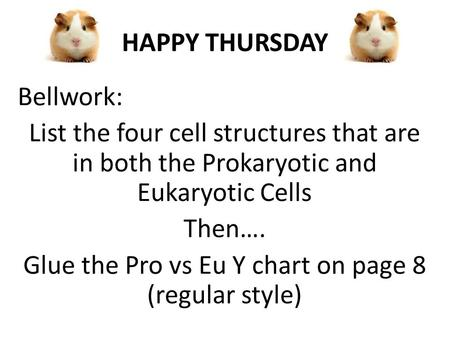 HAPPY THURSDAY Bellwork: List the four cell structures that are in both the Prokaryotic and Eukaryotic Cells Then…. Glue the Pro vs Eu Y chart on page.