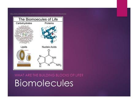 Biomolecules WHAT ARE THE BUILDING BLOCKS OF LIFE?