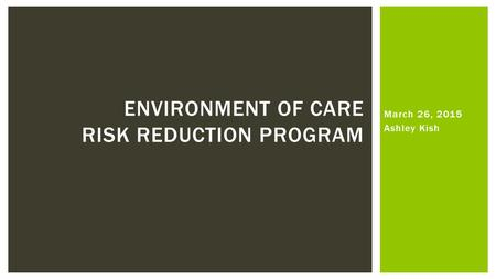 March 26, 2015 Ashley Kish ENVIRONMENT OF CARE RISK REDUCTION PROGRAM.