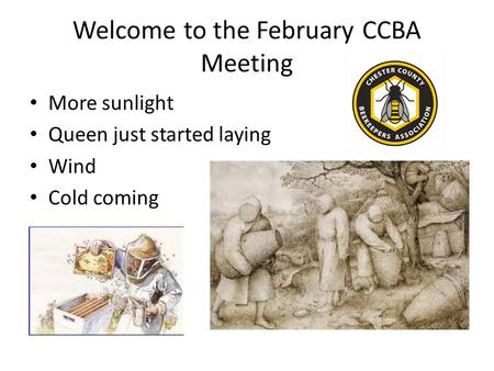 Welcome to the February CCBA Meeting More sunlight Queen just started laying Wind Cold coming.