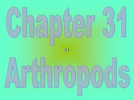 Chapter 31 Arthropods.