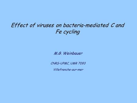 Effect of viruses on bacteria-mediated C and Fe cycling M.G. Weinbauer CNRS-UPMC, UMR 7093 Villefranche-sur-mer.