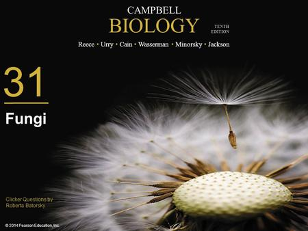 CAMPBELL BIOLOGY Reece Urry Cain Wasserman Minorsky Jackson © 2014 Pearson Education, Inc. TENTH EDITION Clicker Questions by Roberta Batorsky 31 Fungi.