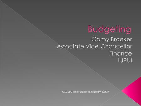 CACUBO Winter Workshop, February 19, 2014.  What is budgeting and why is it important?  Academic planning  Budget development  Primary architectures.