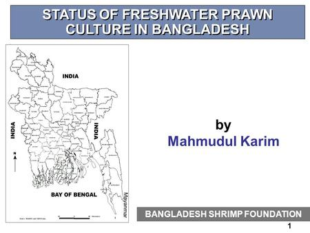 1 STATUS OF FRESHWATER PRAWN CULTURE IN BANGLADESH BANGLADESH SHRIMP FOUNDATION by Mahmudul Karim.