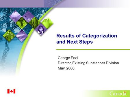 Results of Categorization and Next Steps George Enei Director, Existing Substances Division May, 2006.