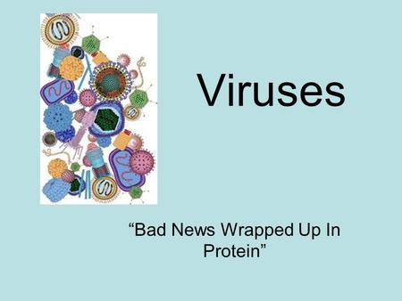 "Viruses ""Bad News Wrapped Up In Protein"". When did we first learn about viruses? First known in the early 1800's 1935: Tobacco Mosaic Virus -first seen."