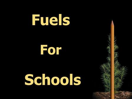 Fuels For Schools. II. Our Partnership I. Heating Schools With Wood 2 Main Topics: