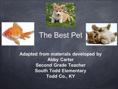 The Best Pet Adapted from materials developed by Abby Carter Second Grade Teacher South Todd Elementary Todd Co., KY.