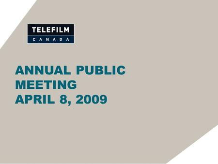ANNUAL PUBLIC MEETING APRIL 8, 2009. MR. MICHEL ROY CHAIR OF THE BOARD.