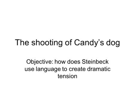 The shooting of Candy's dog Objective: how does Steinbeck use language to create dramatic tension.