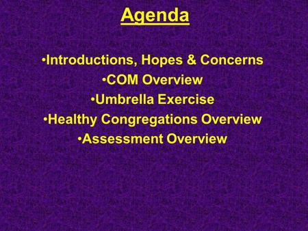 Agenda Introductions, Hopes & Concerns COM Overview Umbrella Exercise Healthy Congregations Overview Assessment Overview.