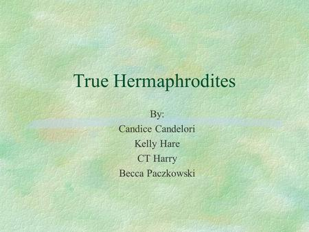 True Hermaphrodites By: Candice Candelori Kelly Hare CT Harry Becca Paczkowski.