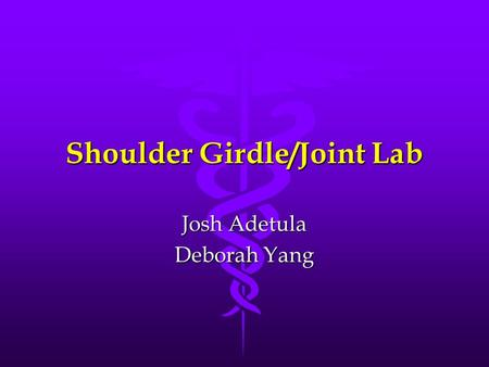 Shoulder Girdle/Joint Lab Josh Adetula Deborah Yang.