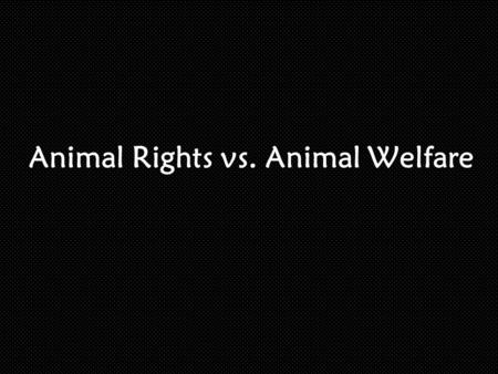 Animal Rights vs. Animal Welfare. Main Idea… What is the difference between animal rights and animal welfare?