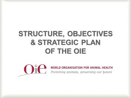 1 STRUCTURE, OBJECTIVES & STRATEGIC PLAN OF THE OIE.