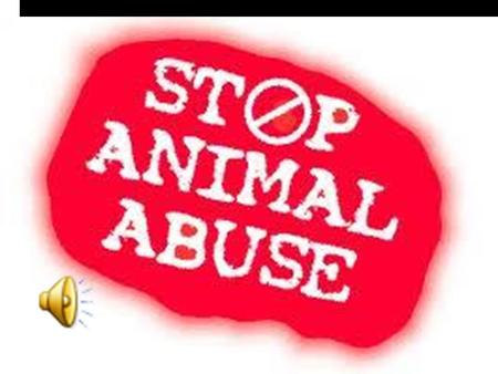 Animal Abuse Statistics  Of 1880 animal cruelty cases reported in 2007  64.5% involved dogs  18% involved cats  25% involved other animals.
