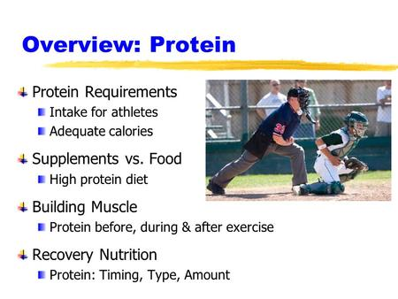 Overview: Protein Protein Requirements Intake for athletes Adequate calories Supplements vs. Food High protein diet Building Muscle Protein before, during.