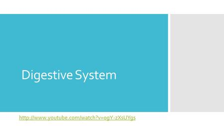 Digestive System http://www.youtube.com/watch?v=0gY-zXsUYgs.
