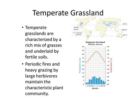 Temperate Grassland Temperate grasslands are characterized by a rich mix of grasses and underlaid by fertile soils. Periodic fires and heavy grazing by.