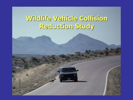 Wildlife Vehicle Collision Reduction Study. Why this Study.