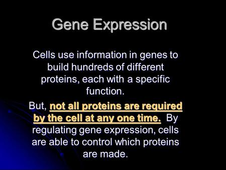 Gene Expression Cells use information in genes to build hundreds of different proteins, each with a specific function. But, not all proteins are required.