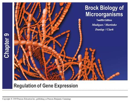 Copyright © 2009 Pearson Education Inc., publishing as Pearson Benjamin Cummings Brock Biology of Microorganisms Twelfth Edition Madigan / Martinko Dunlap.