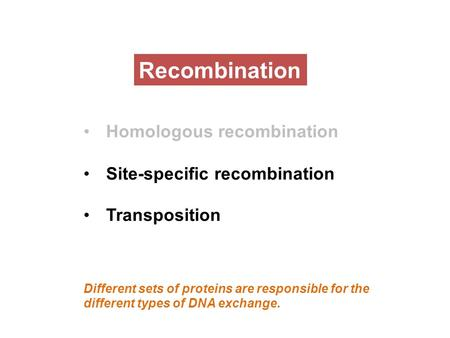 Recombination Homologous recombination Site-specific recombination Transposition Different sets of proteins are responsible for the different types of.