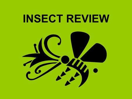 INSECT REVIEW.