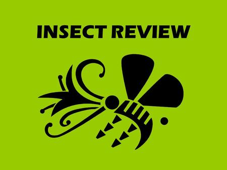 INSECT REVIEW. Hard, outer wings of insects such as beetles. SHELL-LIKE.