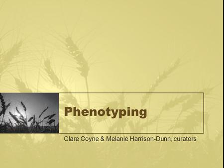 Phenotyping Clare Coyne & Melanie Harrison-Dunn, curators.