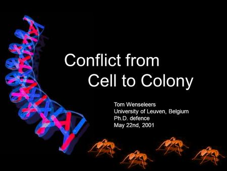 Tom Wenseleers University of Leuven, Belgium Ph.D. defence May 22nd, 2001 Conflict from Cell to Colony.