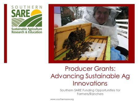 Producer Grants: Advancing Sustainable Ag Innovations Southern SARE Funding Opportunities for Farmers/Ranchers www.southernsare.org.