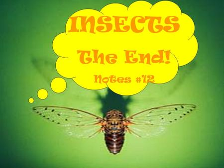 INSECTS The End! Notes #12. INSECT BENEFITS Predators and Parasites Decomposers and Recyclers Weed Control Pollination Useful Products Food for Animals.