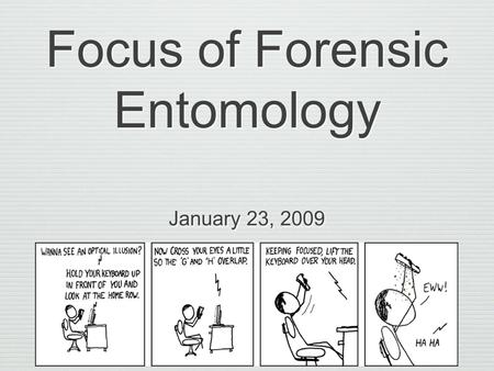 Focus of Forensic Entomology January 23, 2009. Definitions Forensic: Pertaining to, connected with, or used in courts of law Entomology: The branch of.