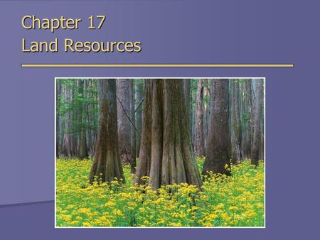 Chapter 17 Land Resources. Land Use - Worldwide Land Use - United States  55% of US land is privately owned  Remainder of land is owned by government.